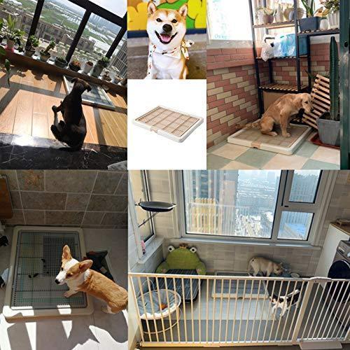 Smart Paws 76X62CMしつけ用 ステップトレー レギュラー 犬のトイレペット トイレ (コーヒー) room-109 09