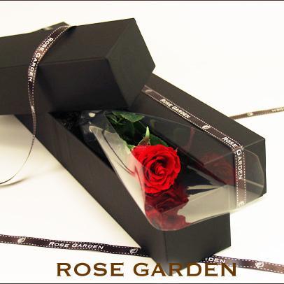 【ブラックボックス・薔薇(バラ)一輪】 誕生日・サプライズプレゼント のプリザーブドフラワーギフト   rosegarden
