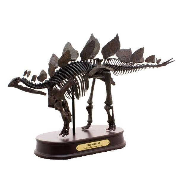 ステゴサウルス スケルトンモデル FDS604/BR(70104)(玩具)
