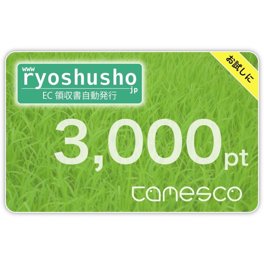 【ryoshusho.jp】ECモール出店者向け領収書自動発行サービス ポイントチャージ用 ライセンス 3000pt ryoshusho