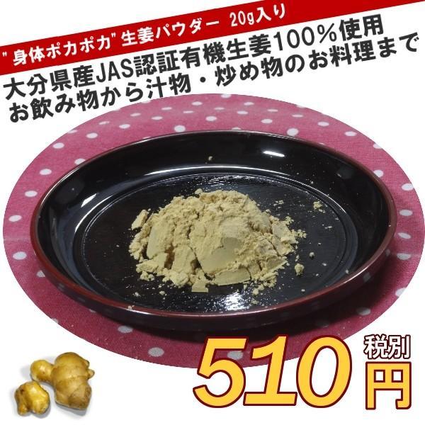 後藤製菓×良質計画 大分県臼杵市産 有機JAS認証 生姜パウダー 20g入り ryositukeikaku