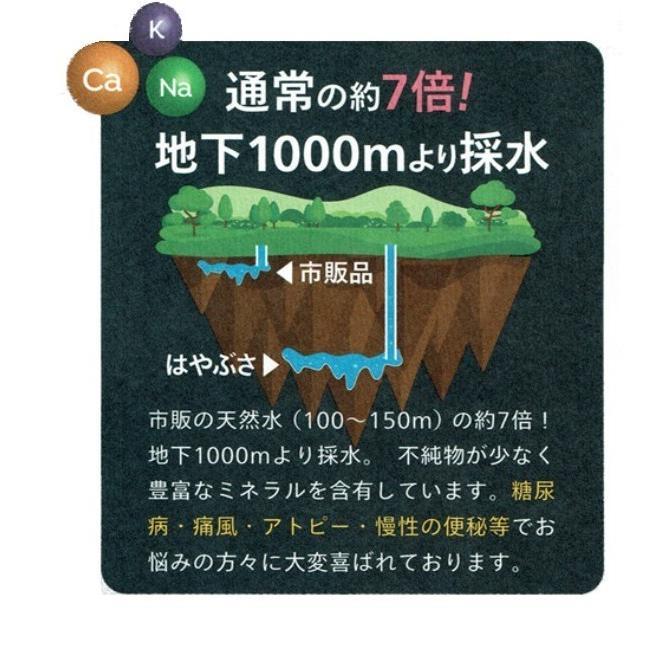 自社工場直送!採れたての天然高アルカリイオン温泉水 りょう泉はやぶさ ペットボトル 500mL×24本|ryousen|05