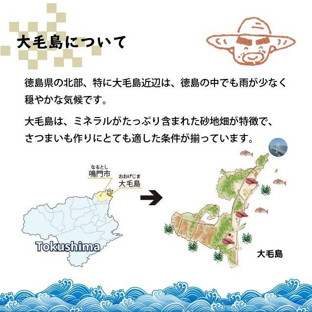 お百姓さんが作ったスイートポテト 1ケ 鳴門金時 丁井 のし スイーツ ギフト プレゼント ryugu-choi 06