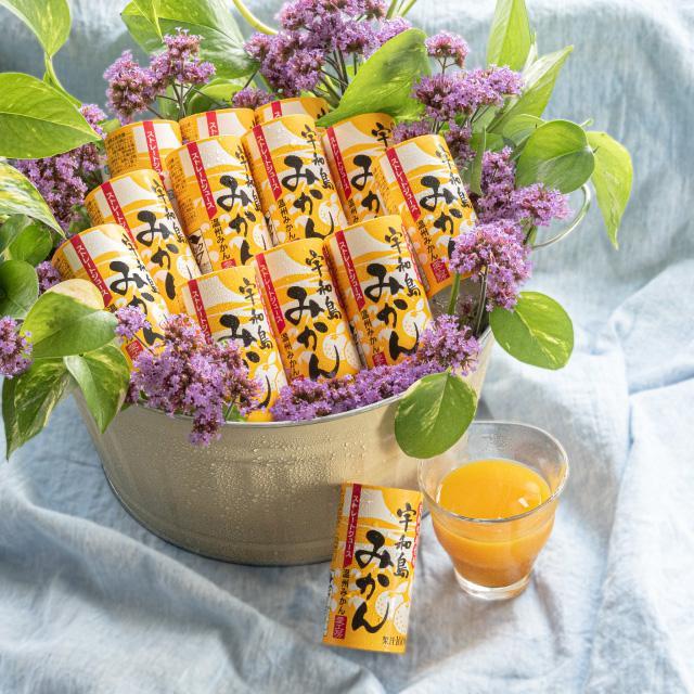 宇和島みかん 125ml 1本 果汁100% ストレートジュース のし ギフト プレゼント|ryugu-choi