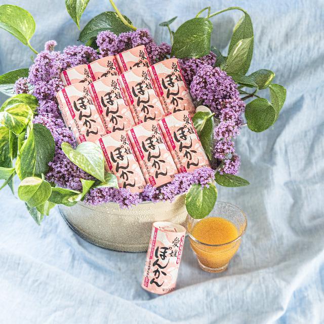 愛媛ぽんかん 125ml 1本 果汁100% ストレートジュース のし ギフト プレゼント|ryugu-choi
