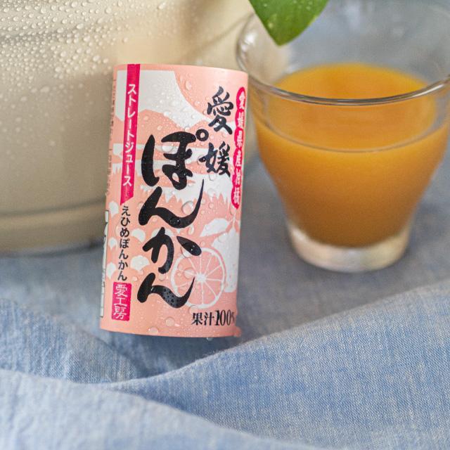 愛媛ぽんかん 125ml 1本 果汁100% ストレートジュース のし ギフト プレゼント|ryugu-choi|02