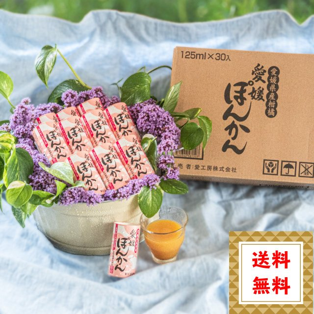 送料無料 愛媛ぽんかん 30本入 果汁100% ストレートジュース のし ギフト プレゼント|ryugu-choi
