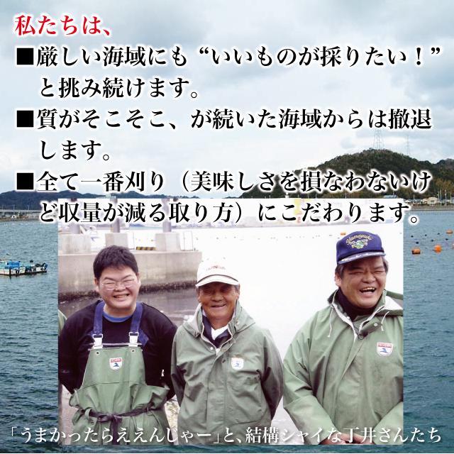 お試し 全国一律送料無料 鳴門わかめ うず潮が育てた カットわかめ50g(25g×2袋) チャック付袋 大毛島産 国産|ryugu-choi|09