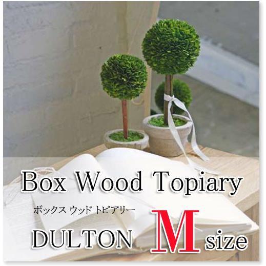 トピアリーボール(M) 観葉植物/CH07-G297M/ダルトン/DULTON s-bunkadou