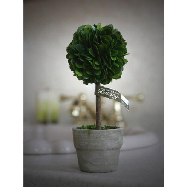 トピアリーボール(M) 観葉植物/CH07-G297M/ダルトン/DULTON s-bunkadou 02