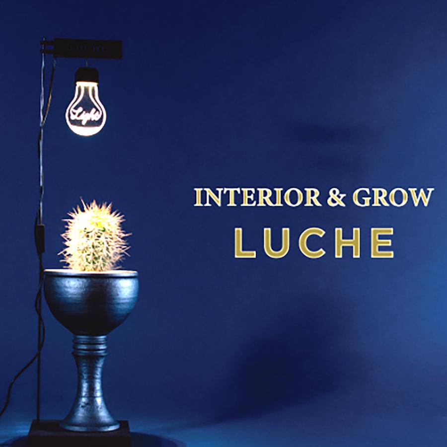 人気ギフト 2021栽培用ライト LEDスタンドライト 植物栽培 植物育成 野菜 照明 LED USB電源 デスクライト プレゼント ポットランド LUCHE ルーチェ safety-toilet