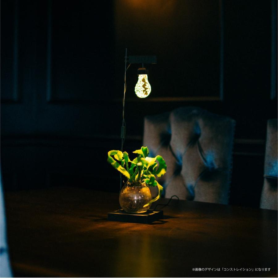 人気ギフト 2021栽培用ライト LEDスタンドライト 植物栽培 植物育成 野菜 照明 LED USB電源 デスクライト プレゼント ポットランド LUCHE ルーチェ safety-toilet 13