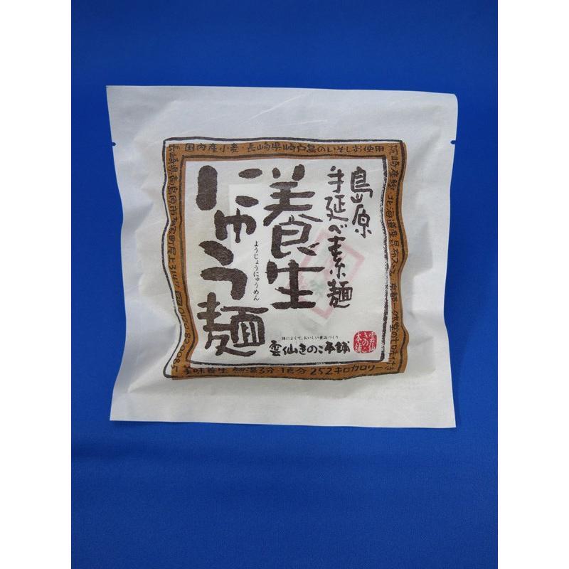 養生にゅう麺 78g|sakatareitou