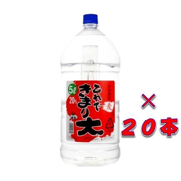 これできまり大 20° 本格むぎ焼酎 5000ml 5ケース(20本)ペットボトル 鹿児島県 若松酒造