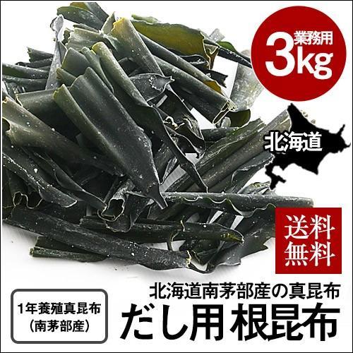 業務用 根昆布(真昆布) (3kg) / だし昆布 だし用 北海道 白口浜 大容量 sakenosakana