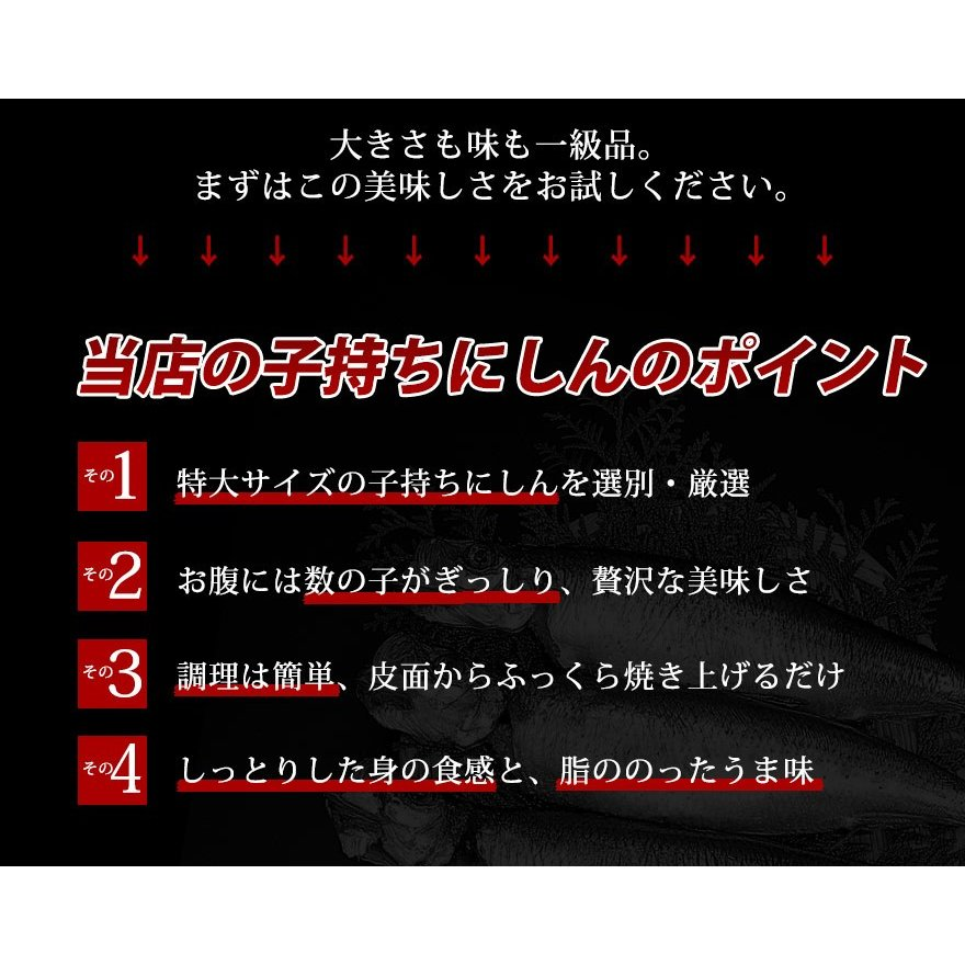 子持ち にしん  (特大サイズ×3尾セット)/ 焼き魚 おかず セット 酒の肴 数の子|sakenosakana|05