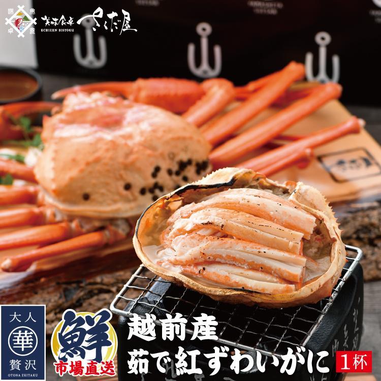 【訳あり】越前産 茹で紅ズワイガニ姿1杯(600〜800g)獲れたて浜茹でを即日発送!【冷蔵便】 sakudaya