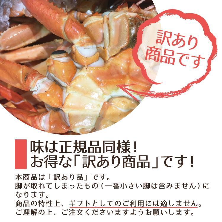 【訳あり】越前産 茹で紅ズワイガニ姿1杯(600〜800g)獲れたて浜茹でを即日発送!【冷蔵便】 sakudaya 08