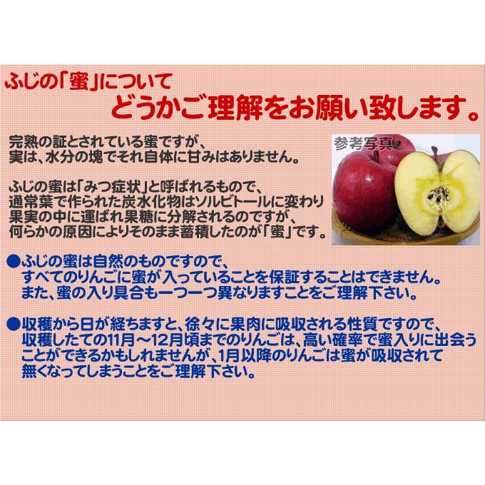 りんご 訳あり 1 0kg 青森県産 サンふじ 家庭用 キズあり 10kg (CA貯蔵)|sakuraba-apple|03
