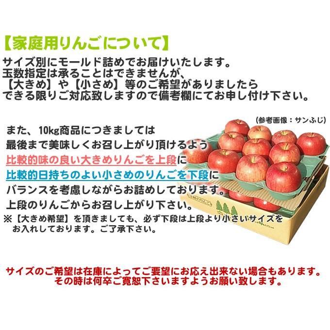 りんご 訳あり 1 0kg 青森県産 サンふじ 家庭用 キズあり 10kg (CA貯蔵)|sakuraba-apple|06