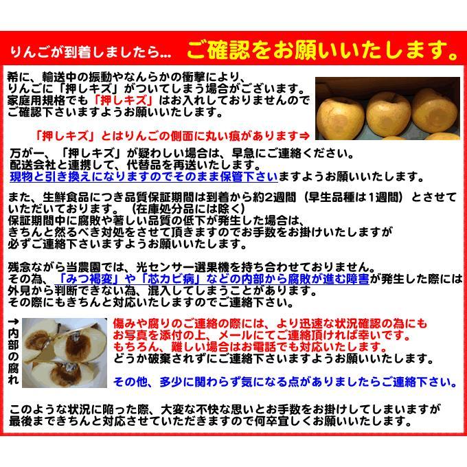 りんご 訳あり 1 0kg 青森県産 サンふじ 家庭用 キズあり 10kg (CA貯蔵)|sakuraba-apple|08