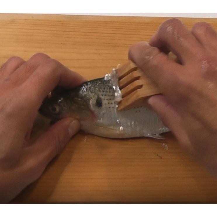 釣り師の鱗とり 鱗が飛び散らない! 魚にやさしい|san-smile|07