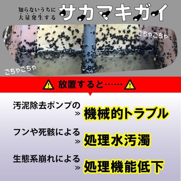 サカマキガイ駆除剤 サナ・サカマキラー (1kgボトル) 浄化槽 対策剤|sana|02