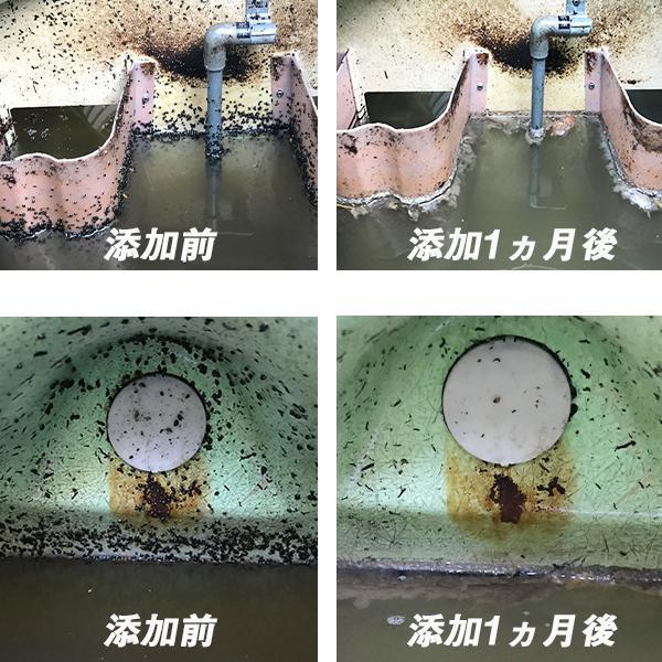 サカマキガイ駆除剤 サナ・サカマキラー (1kgボトル) 浄化槽 対策剤|sana|03