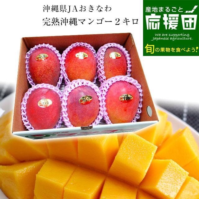 沖縄県より産地直送 JAおきなわ 完熟マンゴー 約2キロ (4玉から7玉入) 送料無料 まんごー アップルマンゴー  沖縄マンゴー|sanchimarugotoouen