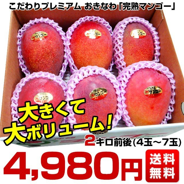 沖縄県より産地直送 JAおきなわ 完熟マンゴー 約2キロ (4玉から7玉入) 送料無料 まんごー アップルマンゴー  沖縄マンゴー|sanchimarugotoouen|02