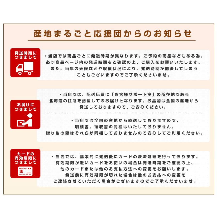 沖縄県より産地直送 JAおきなわ 完熟マンゴー 約2キロ (4玉から7玉入) 送料無料 まんごー アップルマンゴー  沖縄マンゴー|sanchimarugotoouen|08