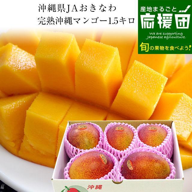沖縄県より産地直送 JAおきなわ 完熟マンゴー 約1.5キロ (3玉から6玉入)  送料無料 まんごー アップルマンゴー 沖縄マンゴー sanchimarugotoouen