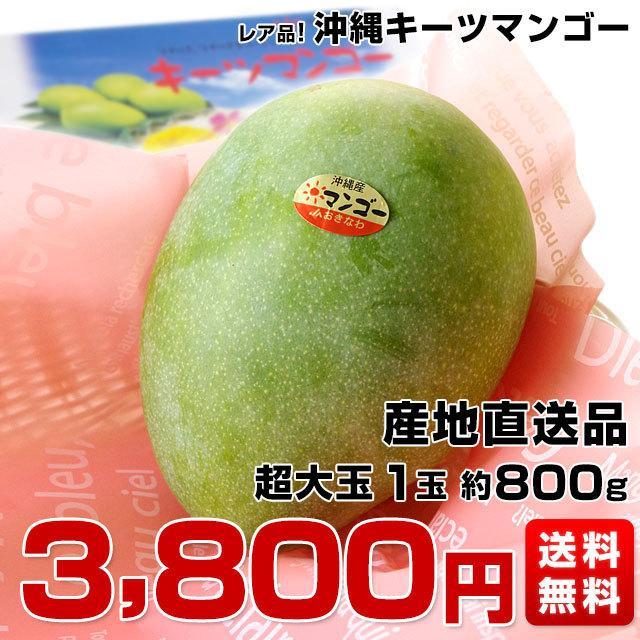 送料無料 沖縄県より産地直送 JAおきなわ キーツマンゴー 約800g 化粧箱 まんごー sanchimarugotoouen 02