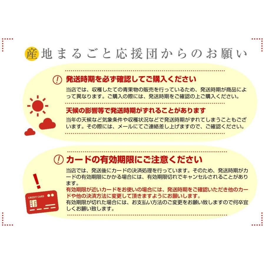 愛媛県より産地直送 JAにしうわ はるか LからMサイズ 5キロ (30から34玉)  送料無料 柑橘 オレンジ ハルカ 西宇和 八幡浜|sanchimarugotoouen|06