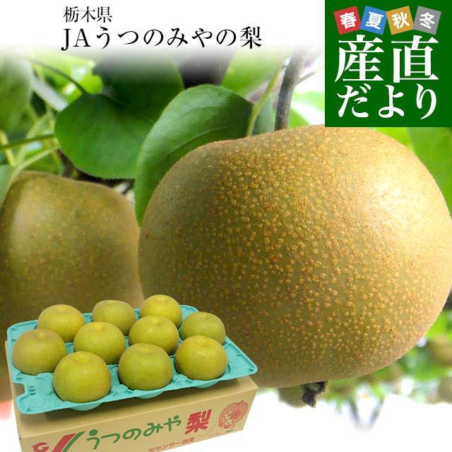 栃木県より産地直送 JAうつのみやの梨 大玉限定 4Lサイズ以上 秀品 約5キロ (7玉から12玉) 送料無料 ※品種をお選びください。|sanchokudayori