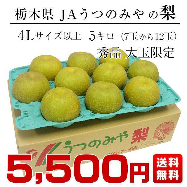 栃木県より産地直送 JAうつのみやの梨 大玉限定 4Lサイズ以上 秀品 約5キロ (7玉から12玉) 送料無料 ※品種をお選びください。|sanchokudayori|02