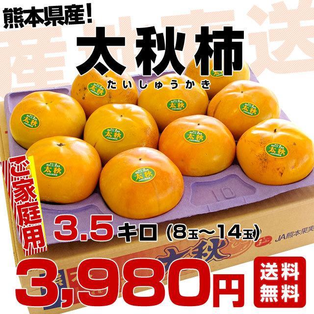 熊本県より産地直送 JAあしきた 太秋柿 3.5キロ(8玉から14玉) 送料無料 柿 かき|sanchokudayori|02