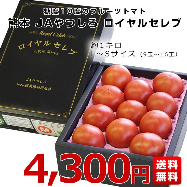 熊本県より産地直送 JAやつしろ フルーツトマト ロイヤルセレブ 約1キロ LからSサイズ(9から16玉) とまと|sanchokudayori|02