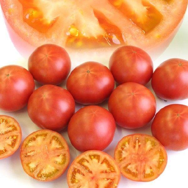熊本県より産地直送 JAやつしろ フルーツトマト ロイヤルセレブ 約1キロ LからSサイズ(9から16玉) とまと|sanchokudayori|03