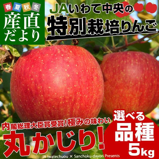 岩手県より産地直送 JAいわて中央 皮ごとまるごと!特別栽培りんご 5 キロ (14玉から25玉) 林檎 リンゴ 送料無料 sanchokudayori