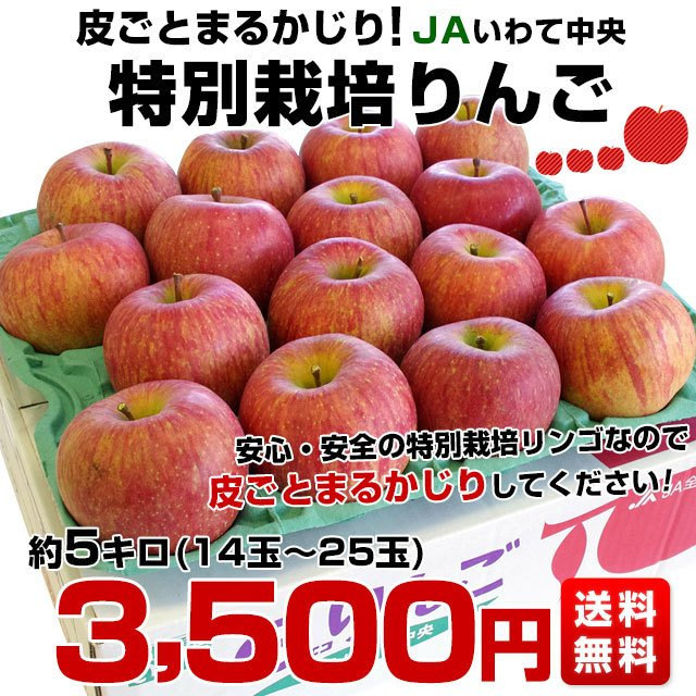 岩手県より産地直送 JAいわて中央 皮ごとまるごと!特別栽培りんご 5 キロ (14玉から25玉) 林檎 リンゴ 送料無料 sanchokudayori 02