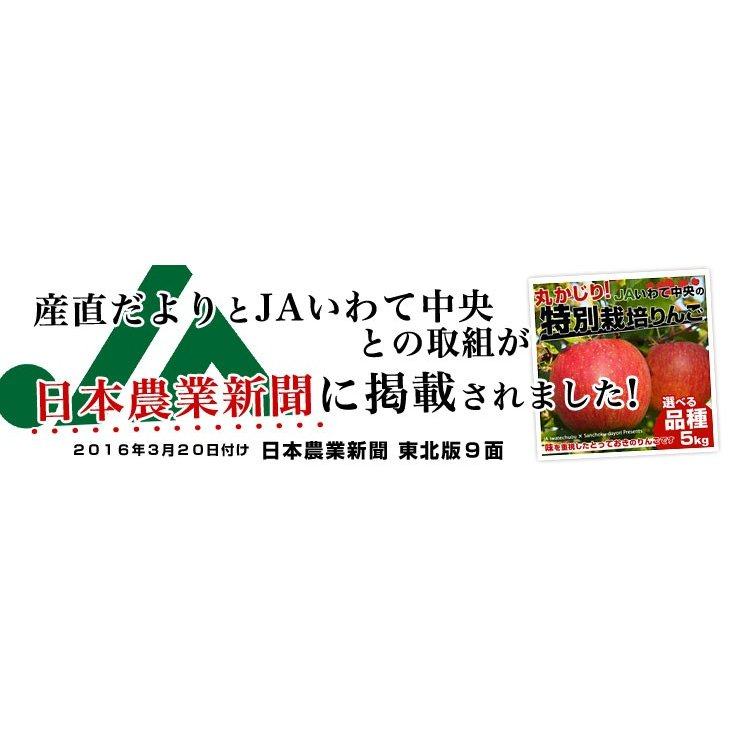 岩手県より産地直送 JAいわて中央 皮ごとまるごと!特別栽培りんご 5 キロ (14玉から25玉) 林檎 リンゴ 送料無料 sanchokudayori 08