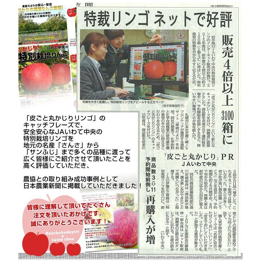 岩手県より産地直送 JAいわて中央 皮ごとまるごと!特別栽培りんご 5 キロ (14玉から25玉) 林檎 リンゴ 送料無料 sanchokudayori 09