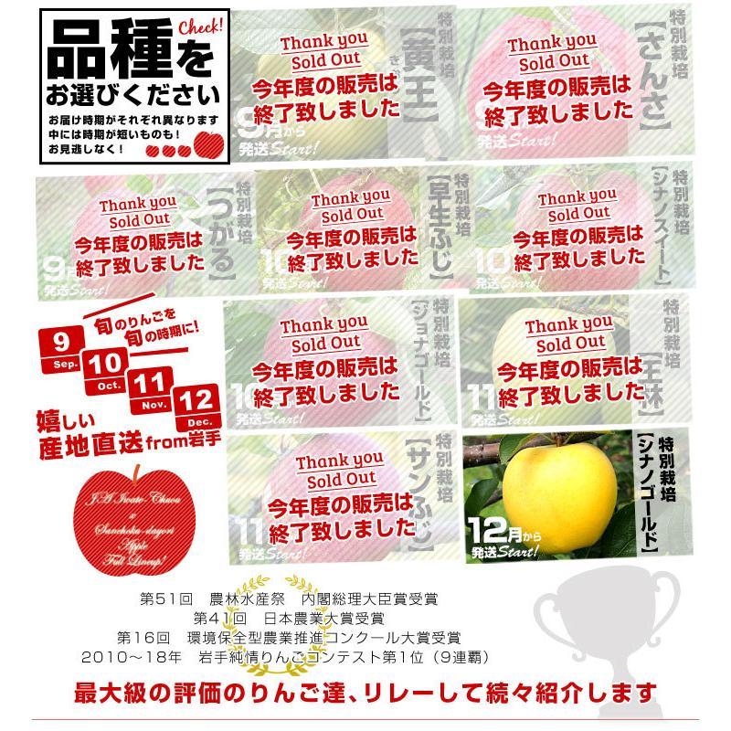 岩手県より産地直送 JAいわて中央 皮ごとまるごと!特別栽培りんご 5 キロ (14玉から25玉) 林檎 リンゴ 送料無料 sanchokudayori 05