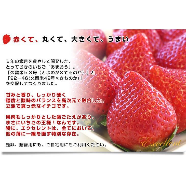 福岡県より産地直送 JAくるめ あまおういちご EX:最上級品エクセレント 420g(12粒から15粒) 苺 いちご イチゴ ストロベリー sanchokudayori 06