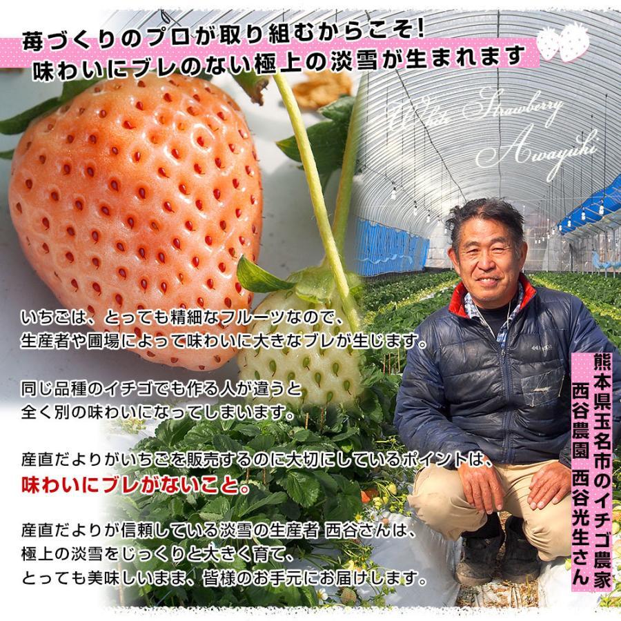 熊本県より産地直送 西谷農園の白いちご 淡雪(あわゆき) Lサイズ以上 約540g(270g×2P(8粒から15粒×2P))苺 イチゴ 送料無料|sanchokudayori|04