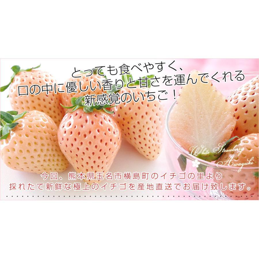 熊本県より産地直送 西谷農園の白いちご 淡雪(あわゆき) Lサイズ以上 約540g(270g×2P(8粒から15粒×2P))苺 イチゴ 送料無料|sanchokudayori|06