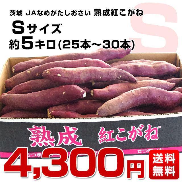 茨城県より産地直送 JAなめがたしおさい さつまいも「熟成紅こがね」 Sサイズ 約5キロ(25本から30本) 送料無料 行方 薩摩芋|sanchokudayori|02