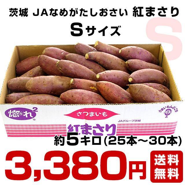 茨城県より産地直送 JAなめがた さつまいも「紅まさり(べにまさり)」 Sサイズ 約5キロ(25本から30本前後) 送料無料 さつま芋 サツマイモ 薩摩芋|sanchokudayori|02