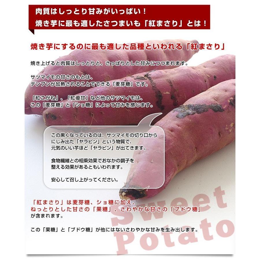 茨城県より産地直送 JAなめがた さつまいも「紅まさり(べにまさり)」 Sサイズ 約5キロ(25本から30本前後) 送料無料 さつま芋 サツマイモ 薩摩芋|sanchokudayori|04